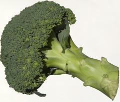 Broccoli240