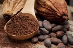 kakao250